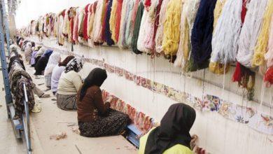 Photo of ۸۰۰ هزار بافنده فرش در کشور تا پایان سال جاری بیمه میشوند