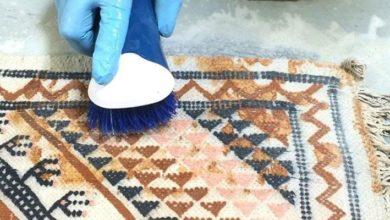 Photo of چطور از بوی نم فرش راحت شویم