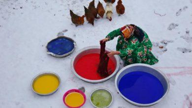 Photo of رنگ های مورد علاقه بافندگان عشایر فارس