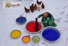 Photo of تصویر «زن رنگرز» برنده مسابقه جهانی عکس