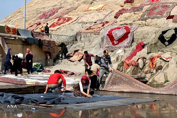 شستن قالی و قالیچه در چشمه علی