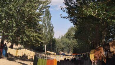 Photo of رقص نخ های رنگی در جوار چشمه «ماهک»