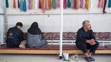 Photo of روزگار ناکوک قالیبافان زنجان